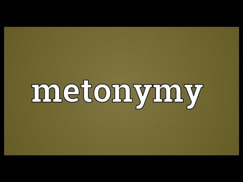 Metonymy Meaning