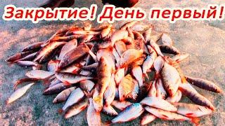 КЛЕВАЛО ИСКЛЮЧИТЕЛЬНО Закрытие сезона подледной рыбалки Первый день
