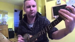 John Dowling Slide Banjo - Whelk Bone