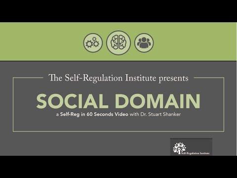 The Social Domain | The Self Regulation Institute with Dr. Stuart Shanker