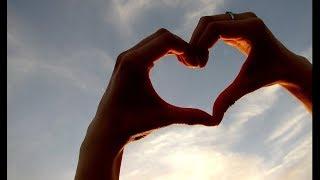 Любовь, нежность, доверие, дружба...
