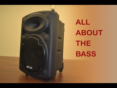 First Time in India British Audio S10 Trolley Speakers - Unboxing & review