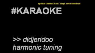Christian Muela | Didjeridoo Karaoke training 3 - Harmonic tuning