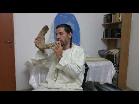 The DEEP Meaning Behind Rosh HaShanah and its Shofar Blasts