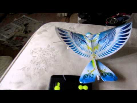 remote control pigeon bird rc - flying in Trenton
