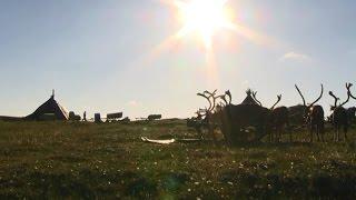 Визитная карточка НАО (Ненецкий автономный округ)(Визитная карточка НАО Большая часть Ненецкого автономного округа расположена за Полярным кругом. Омываетс..., 2016-04-06T10:49:30.000Z)