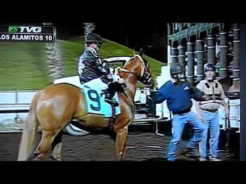 Qualification at ED BURKE MILLION FUTURITY EN LOS ALAMITOS