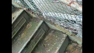 866-649-0333 Fire Escape Inspection Repair Load Test Jersey City NJ FireEscapeEngineers.com