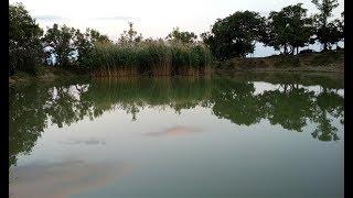Никитские озёра