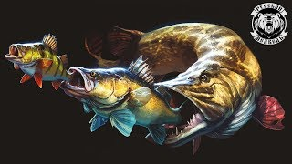 Ночная рыбалка 🐟 Русская рыбалка 4🐟 🐻Русским Медведем