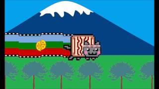 Nyan Cat Mapuche
