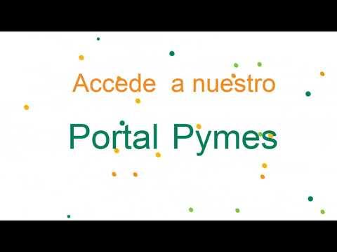 Portal pymes