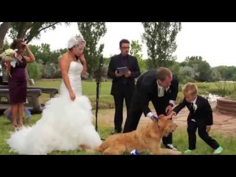BEST Surprise Father Daughter Dance - Daddy Dance With me - Brides Special Dance Surprise for Father