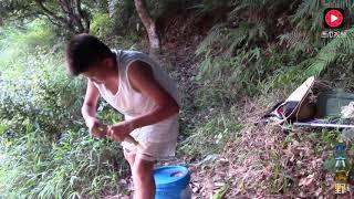 农村小子传统钓鱼法,一根玉米二根竹竿就想钓七八斤重的大草鱼