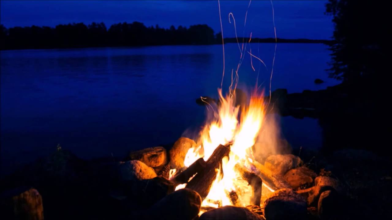 Image result for campfire in the woods