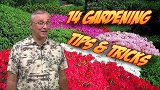 14 Gardening Tips, Tricks, & Ideas