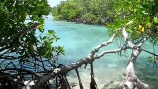 Cayo Leguano, Soultime Travel, Trinidad, catamaran excursion Caribean sea