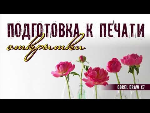 Онлайн конструктор визиток в СПб - создание и разработка