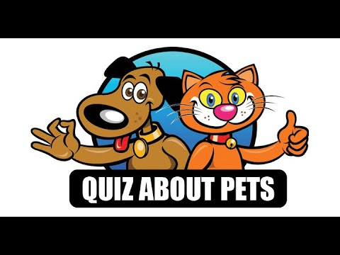 1.500.000 already took this quiz about pets