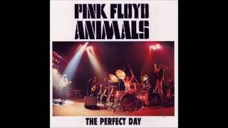 Pink Floyd - Animals - Live  At Boston - USA - 1977