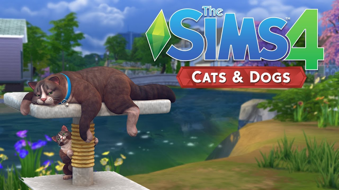 Sims Cats And Dogs Create A Sim Not Working