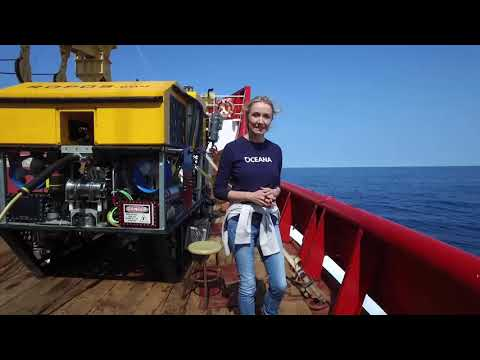 Gulf of St. Lawrence Expedition Log 6: Science and Habitat Protection