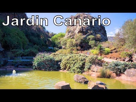 Jardín Botánico Canario Viera y Clavijo Jardin Canario, Gran Canaria | RotWo