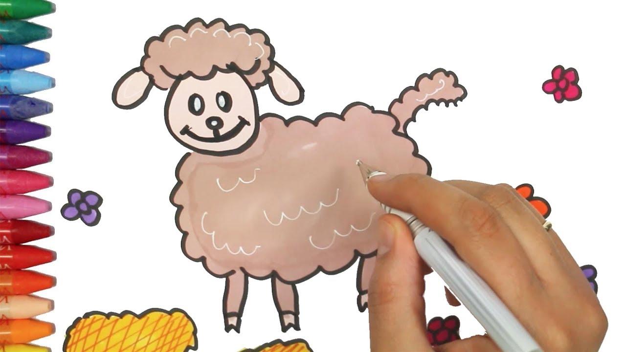 Kuzu çizim Nasıl Yapılır Nasıl çizilir çocuk Ve Bebek Için