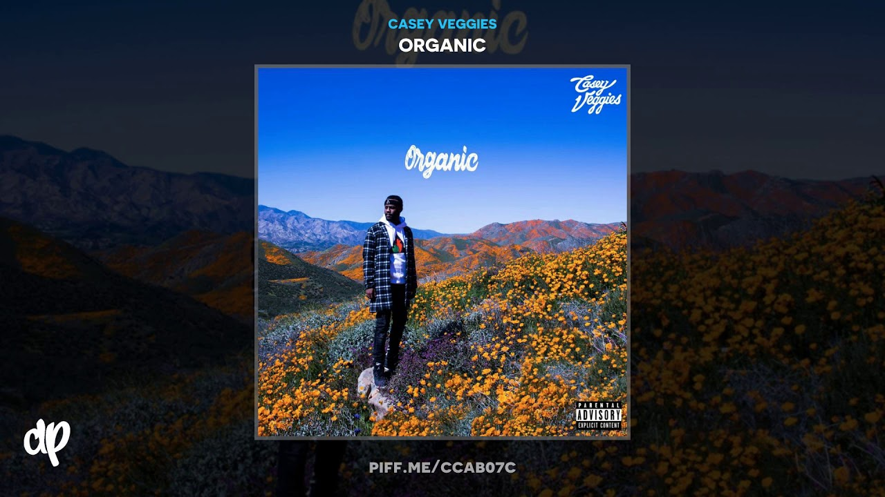 Casey Veggies — No Favors [Organic]