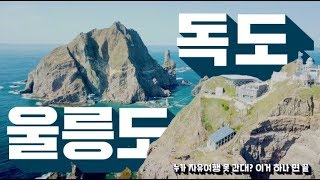 울릉도·독도 자유여행 갈 사람✋ 일정·교통편·숙소 완벽…