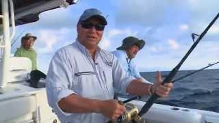 Grand Bahamas Mahi Mahi