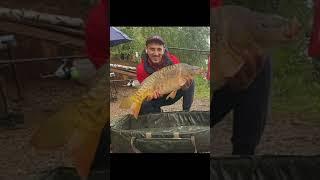 ВОТ ЭТО УЛОВ КАРП BIG FISH Shorts