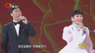 百花迎春-中国文学艺术界2017春节大联欢 2017 China Literary and Art Circles Spring Festival Gala