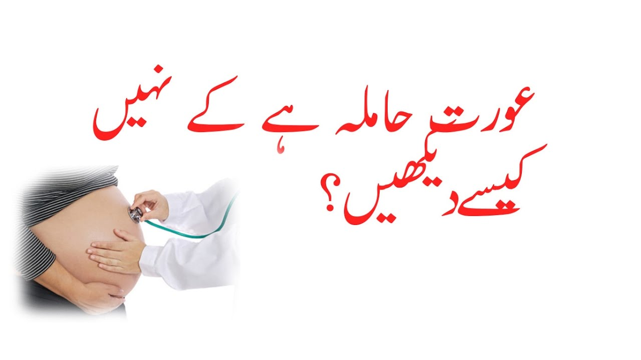 How To Check If Women Pregnant Or Not In Urdu Youtube