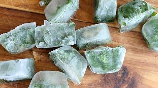 Freezing Herbs:  The Best Way To Preserve Herbs