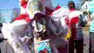 New Orleans Mardi Gras Indians ~ Who