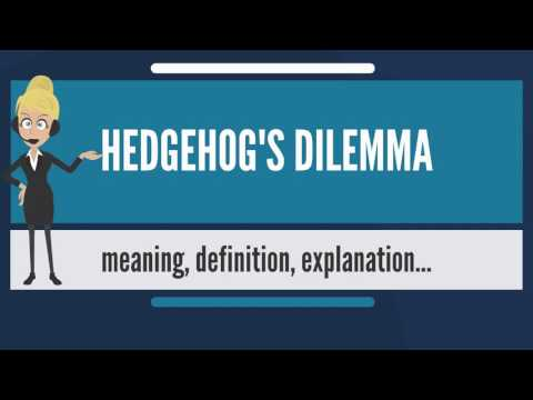 What is HEDGEHOG'S DILEMMA? What does HEDGEHOG'S DILEMMA mean? HEDGEHOG'S DILEMMA meaning