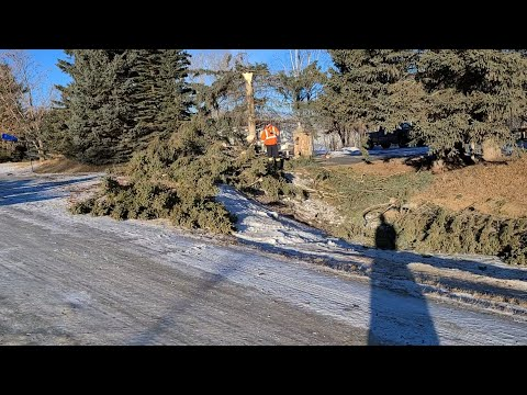Snow squall damage | Another VLOG #102