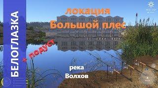Русская рыбалка 4 - река Волхов - Белоглазка и подуст  White-eye Bream and Nase
