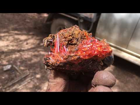 Crocoite From The RED LEAD MINE Near Zeehan Tasmania