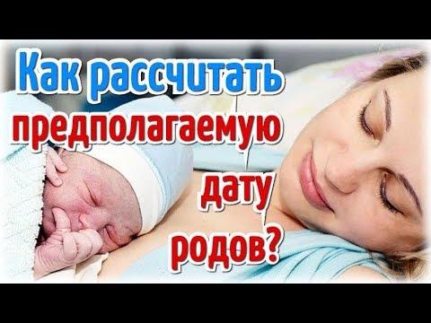 Как рассчитать предполагаемую дату родов (ПДР)?