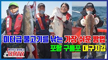 미터급 물고기를 낚는 가장 쉬운 방법 공개! 포항 구룡포 대구 지깅