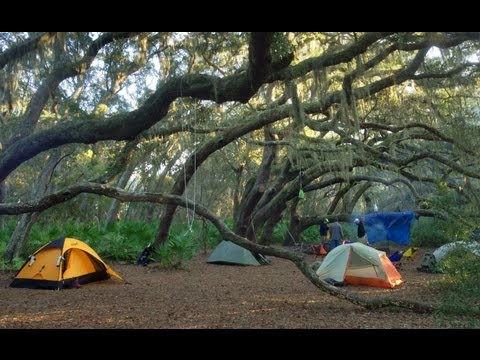 Cumberland Island National Seashore, GA (Backpacking and Camping)