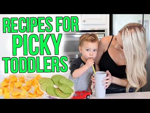 Recipes For Picky Toddlers!