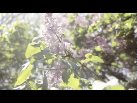 Étrangère à sa TerreVideo 2 d'Eliane GagnonLa course Évasion autour du monde 2012