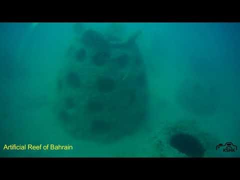 Artifiical Reef Bahrain   09Mar2018