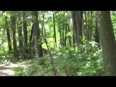 Neponset River Greenway Canton MA Signal Hill Part 1.