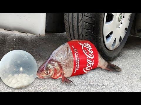 EXPERIMENT: Car Vs FISH With Mentos