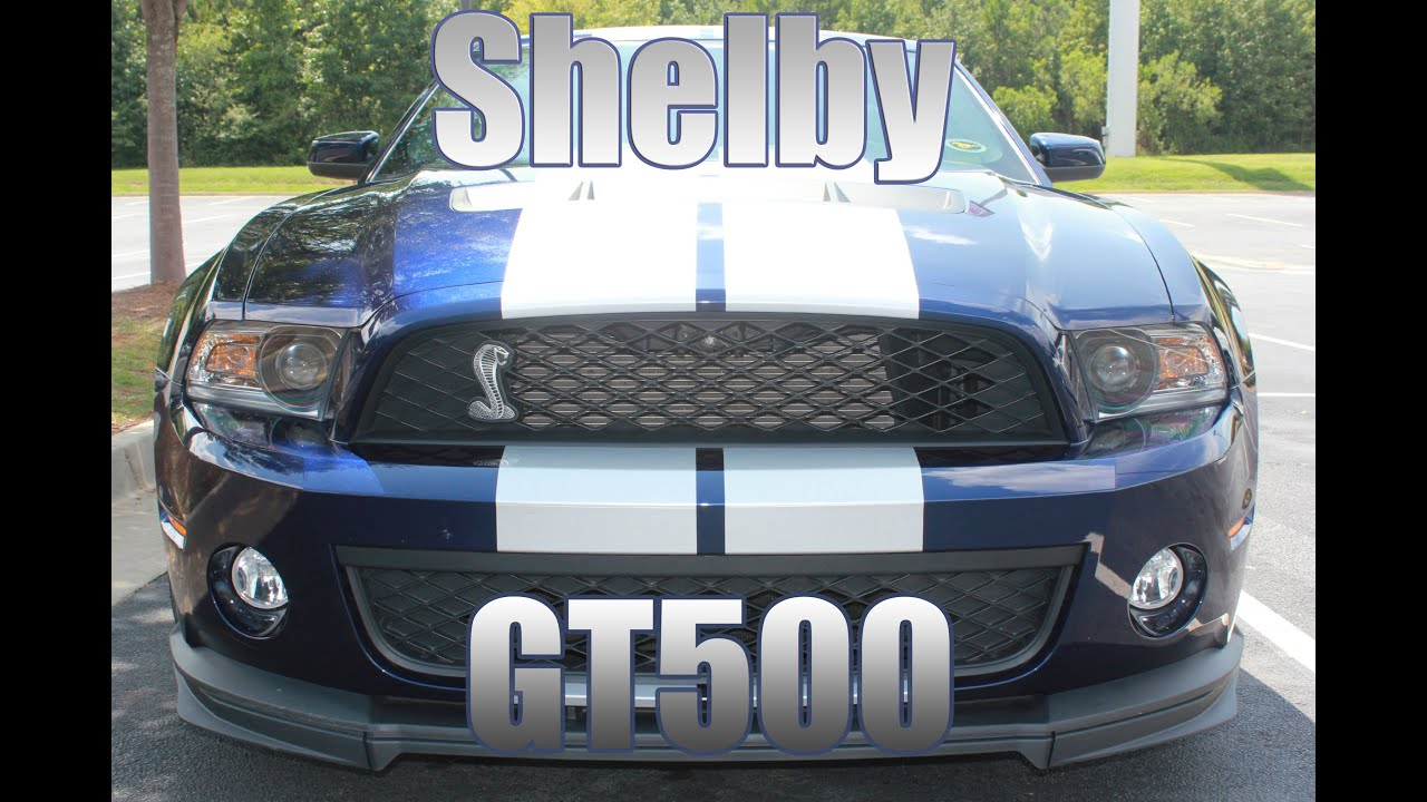 Shelby GT500 Mustang: Friends Mustang on Dispaly at Summit Auto ...