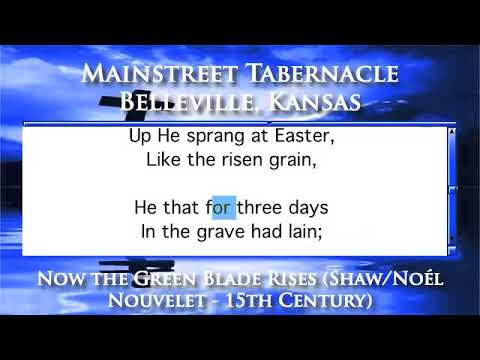 Now the Green Blade Rises (Shaw/Noél Nouvelet - 15th Century) - Organ Version